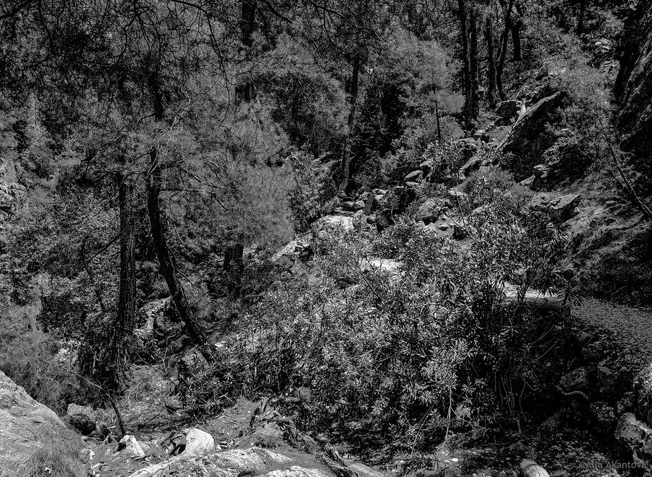 Shades Of Gorges 11