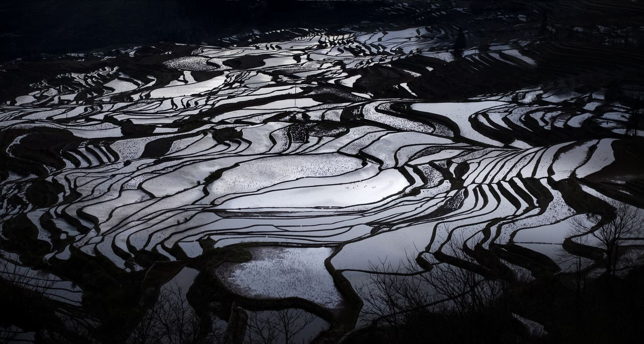 Rice paddy in the mountain of Yunnan, China. This is genuine color off the camera.