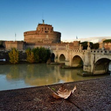 Rome landscapes