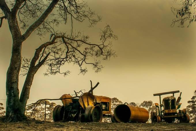 Captured during the bushfires, near sunset with pallor of smoke still in the air.  https://www.sparrowfarts.com/ #Sparrowfartss  Camera: Nikon D5300 Lens: NIKKOR 18.0-140.0 mm f/3.5-5.6 Focal Length: 62.00mm Exposure: 1/200 sec; f/10; ISO100