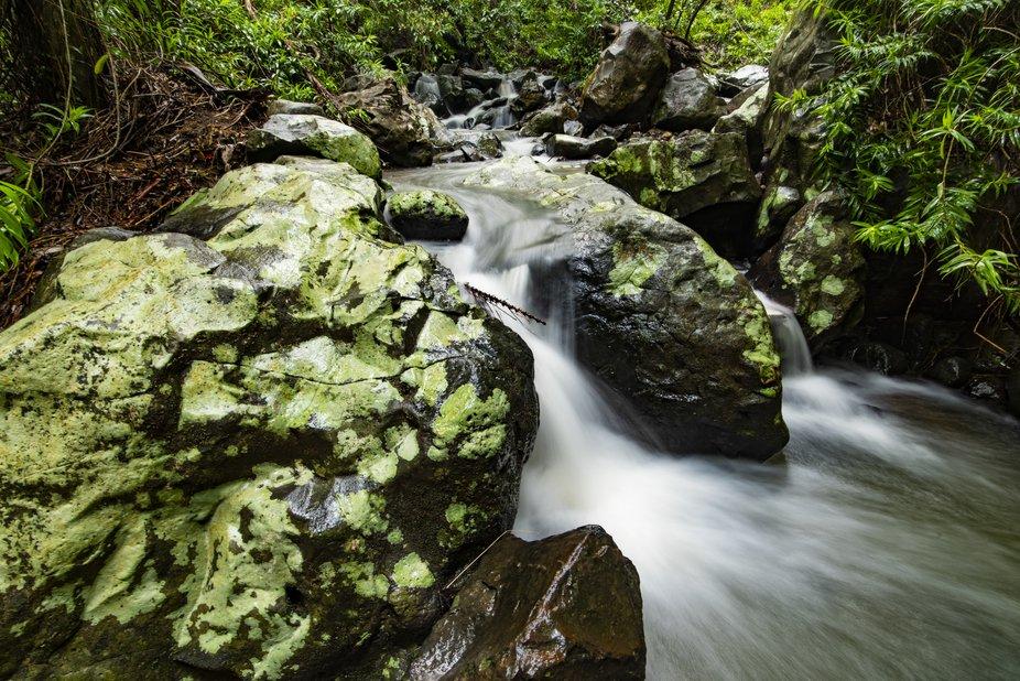 Buderim Falls 2 (1 of 1)