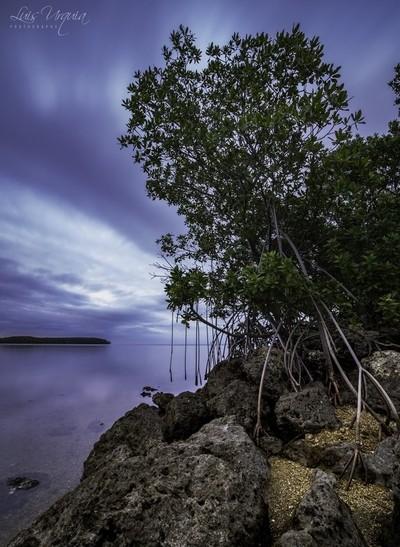 Black Point at Biscayne National Park