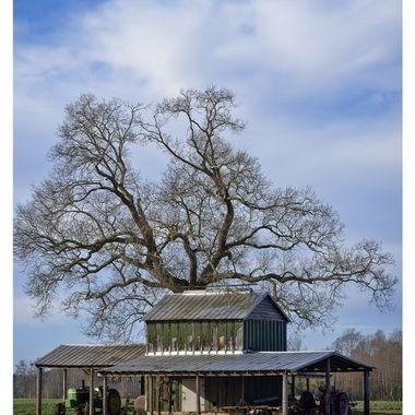 Favorite Barn II
