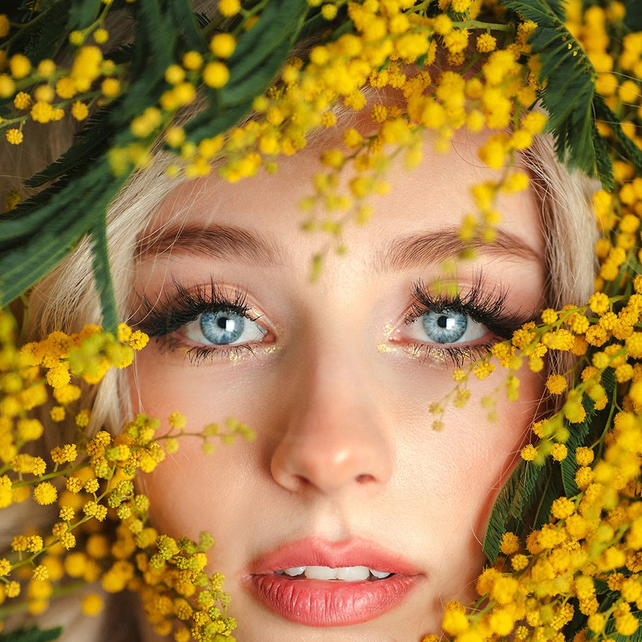 Mimosa Girl by jovanarikalo - Image Of The Month Photo Contest Vol 54