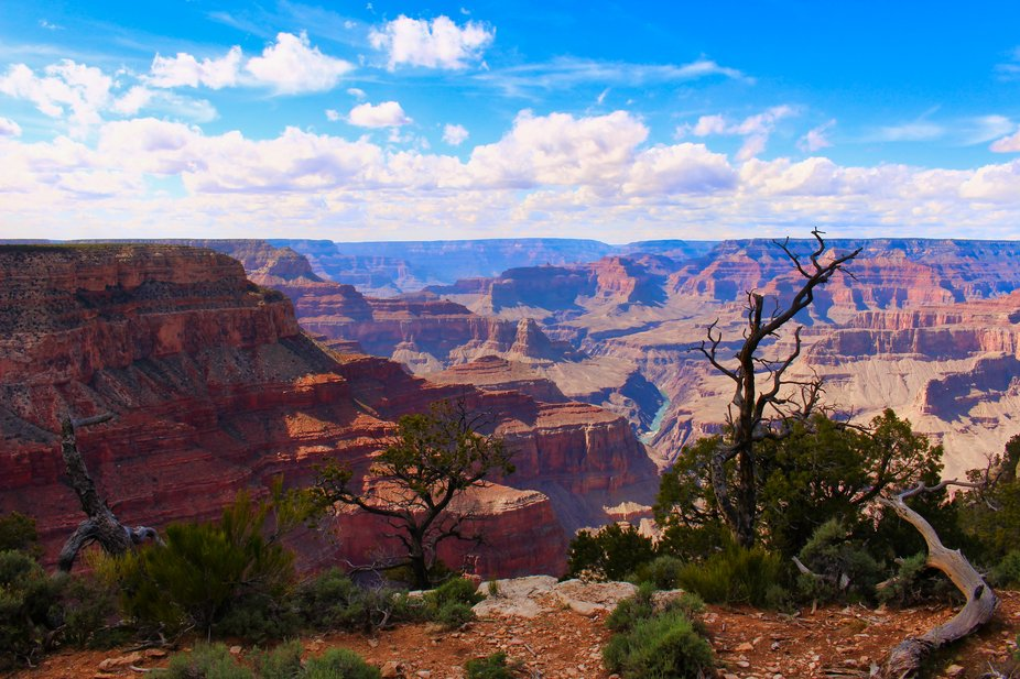 Mather Point Vista