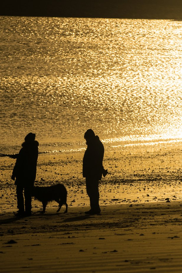 Winters morning dog walk on the beach, taken on Little Haven beach South Shields.