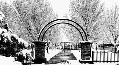 Snow covered Park