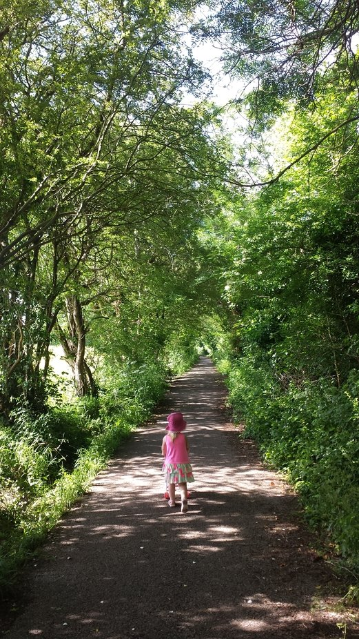Taking a stroll through the lane