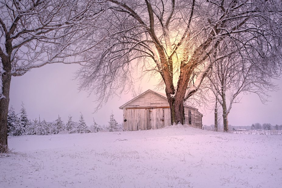 Snowed last night, the kind that sticks to the trees, so I went out this morning as I've...