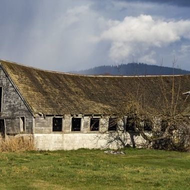 Old barn country scene_
