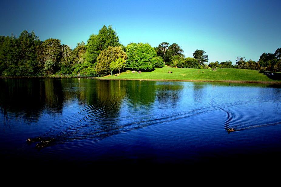 Lake at Hamilton Gardens botanical gardens New Zealand
