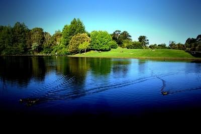 Hamilton Gardens Lake