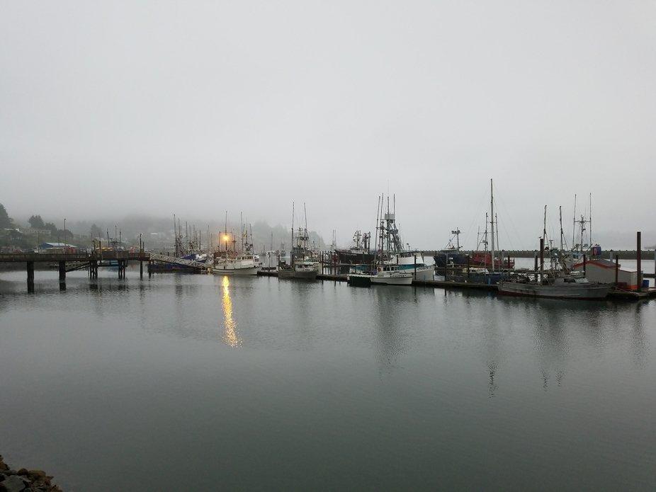 Misty Newport Harbor 2
