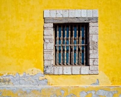 Yellow In Baja