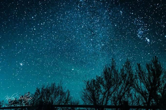 Celestial Silhouettes