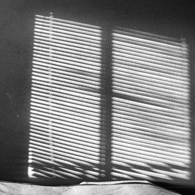 Shadows on the wall from our bedroom window