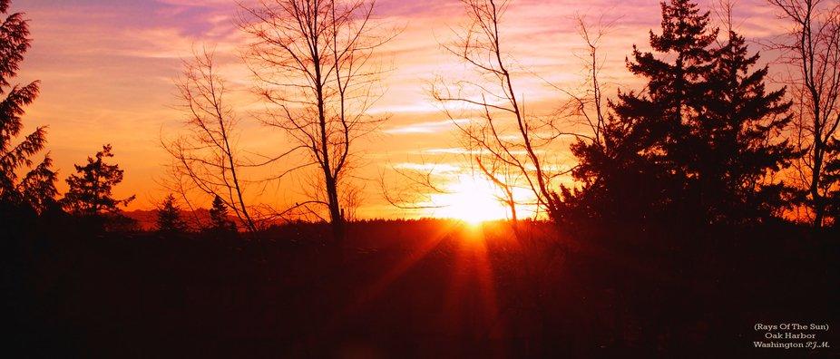 (Rays Of The Sun)  Oak Harbor Washington 2-8-2011