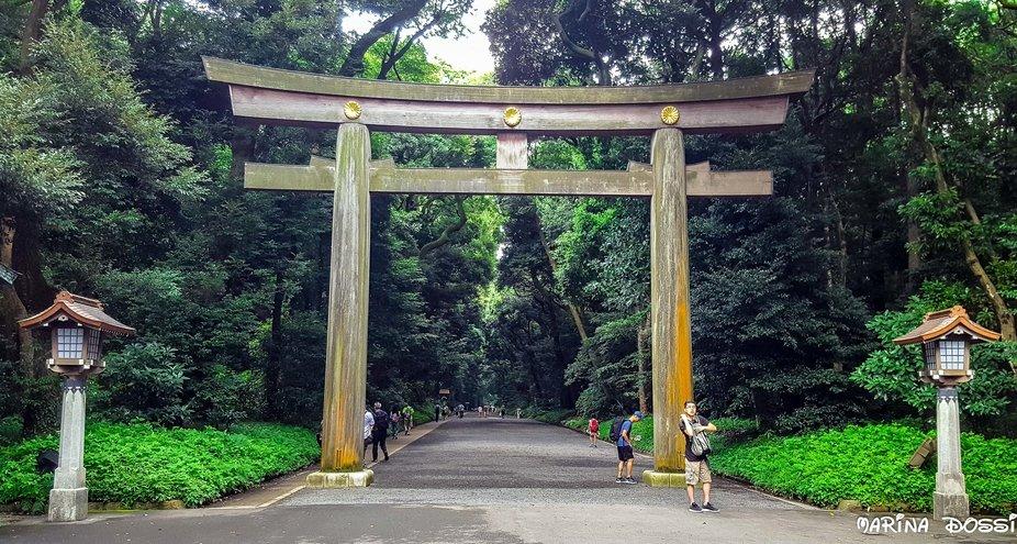 Japan Tokyo Meiji Shrine Gyoen Torii