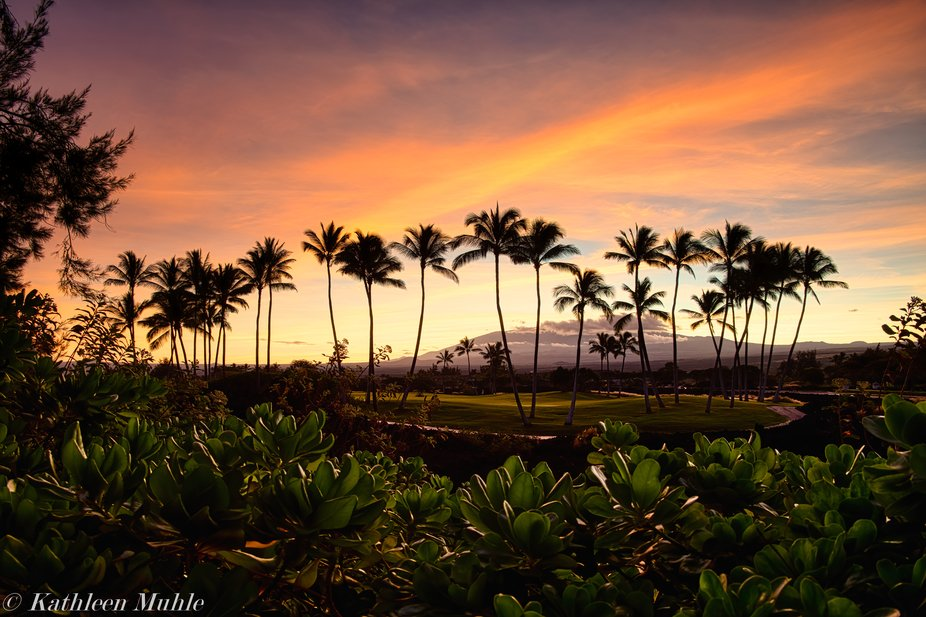 Mauna Kea is tallest point on the Big Island and is a majestic backdrop to the Kings' Co...