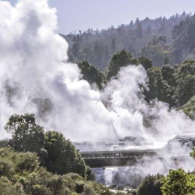 Te Puia - Geothermal Valley - Rotorua, New Zealand