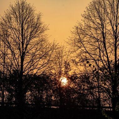 sunrise-1993
