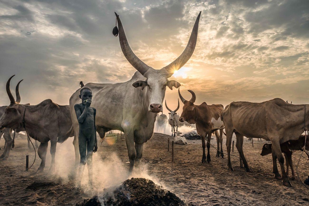 World Photography Day Photo Contest 2020 Winner