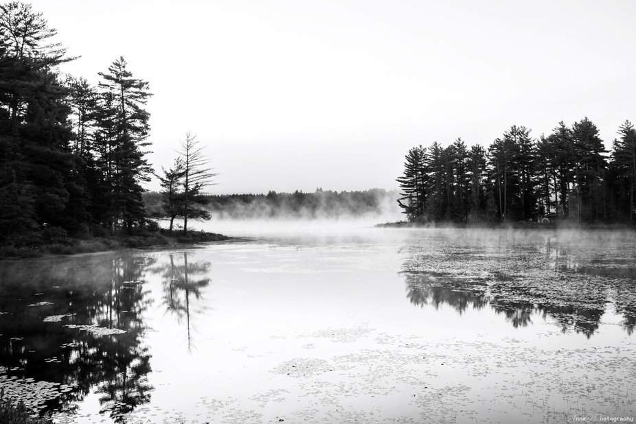 Smoke Lake one foggy foggy morning
