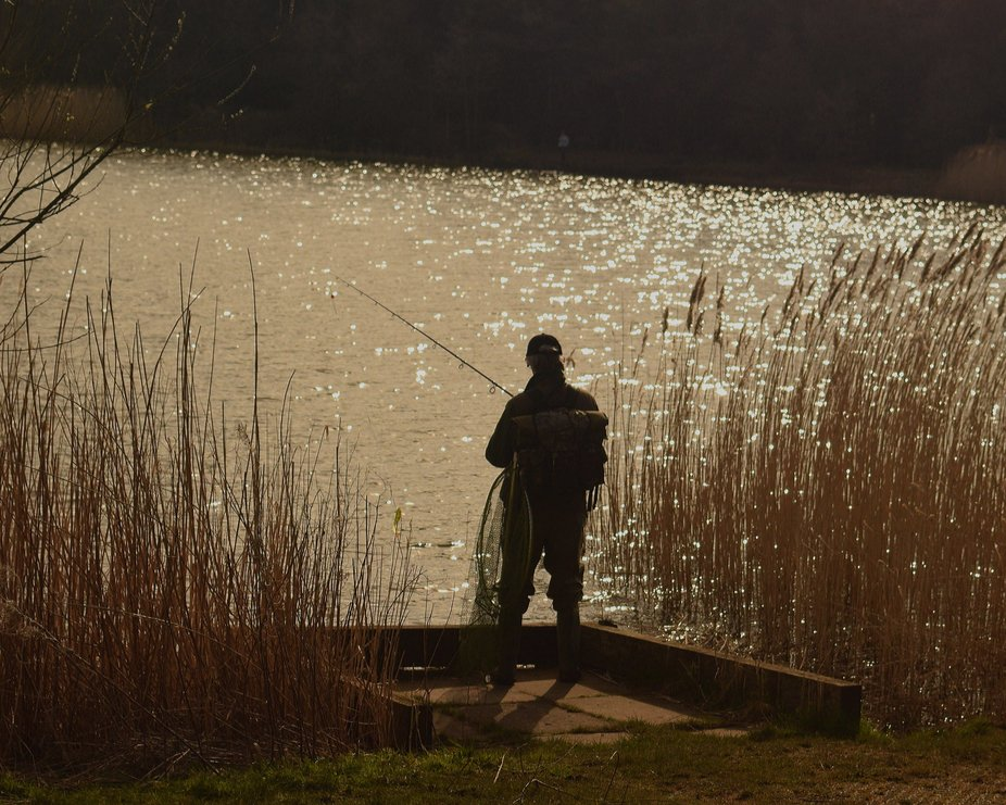 Fisherman in the reeds at Queen Elisabeth 2 Country park at Woodhorn in Northumberland.