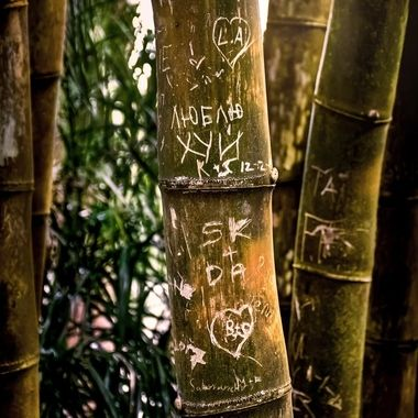 Carvings in Bamboo NW