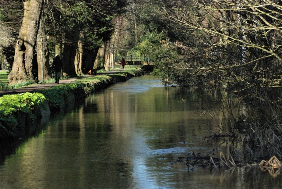 DSC_0082 (2) Reflections in water Bute Park