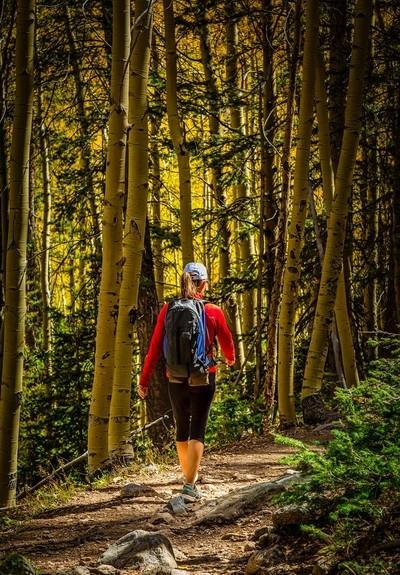 Sarah hiking in the Santa Fe Aspen Forest