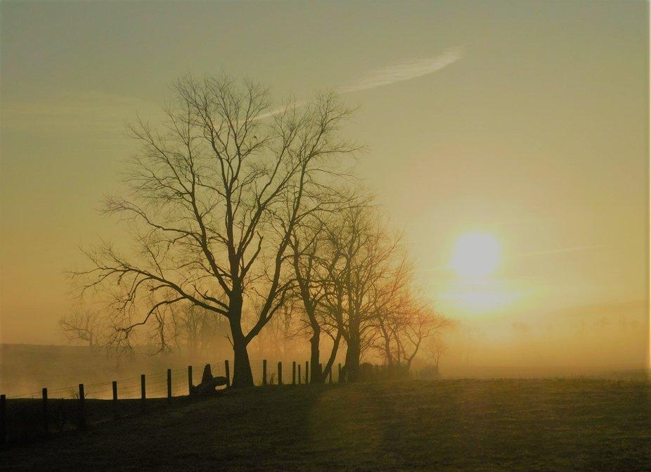The Beauty Of A Misty Morning