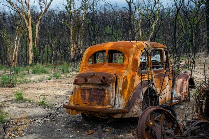 Aftermath of the Australian bush fires 2020