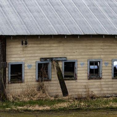old diary farm in disrepair