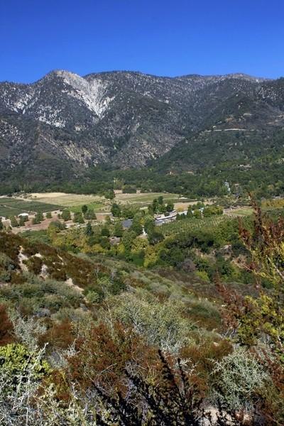 The Valley Below - Oak Glen, CA