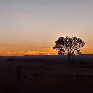 Sunset Collection (98) -  Luddenham