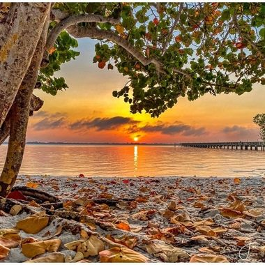 Stuart Florida Sunrise 3-26-20