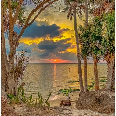 Indian River Sunrise