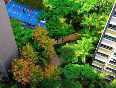 Life goes on. 28 March. Garden area at the ground of public housing Singapore.