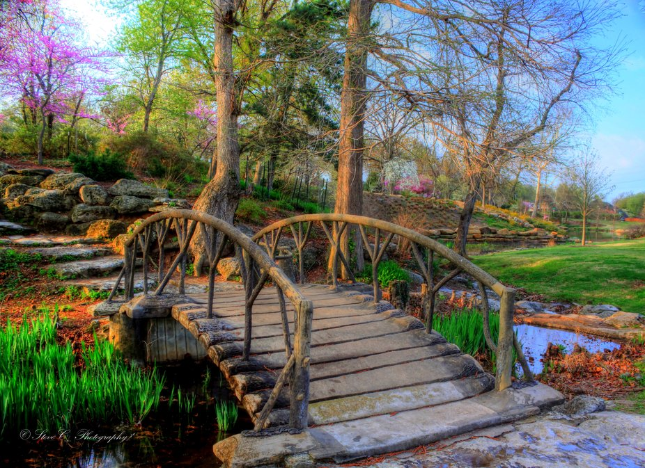 Wooden bridge in the spring