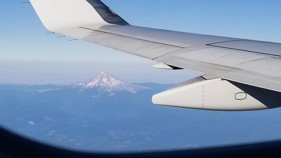 Mt Hood from the plane