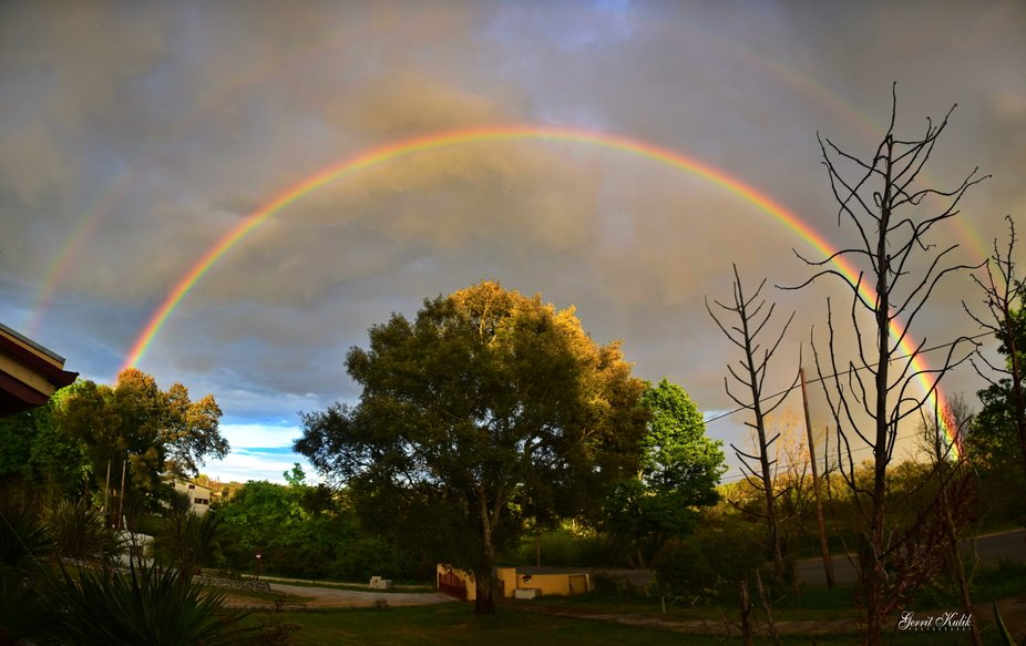 regenboog 2020