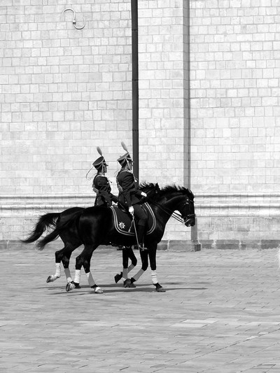 Change of the Guard at the Kremlin, Moscow 16.06.18 658 bw