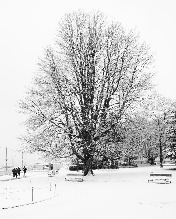 In Geneva in after a snow storm