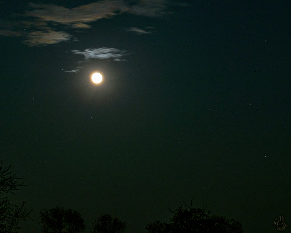 What a beautiful sight it was. I'm so grateful that the skies were clear and theevening wasn'...