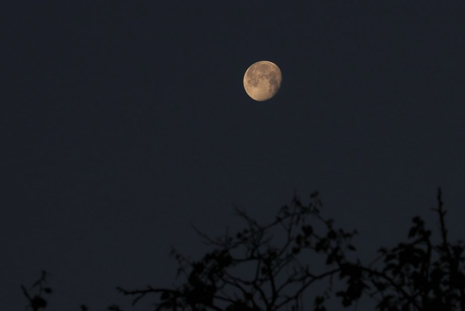 Taken at daybreak as the moon set in the east sky