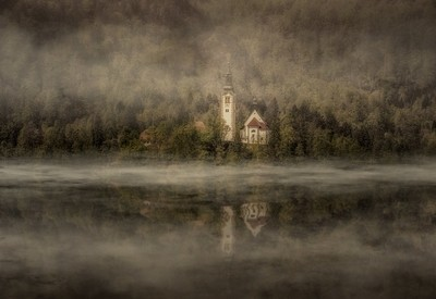 Lonely in mist