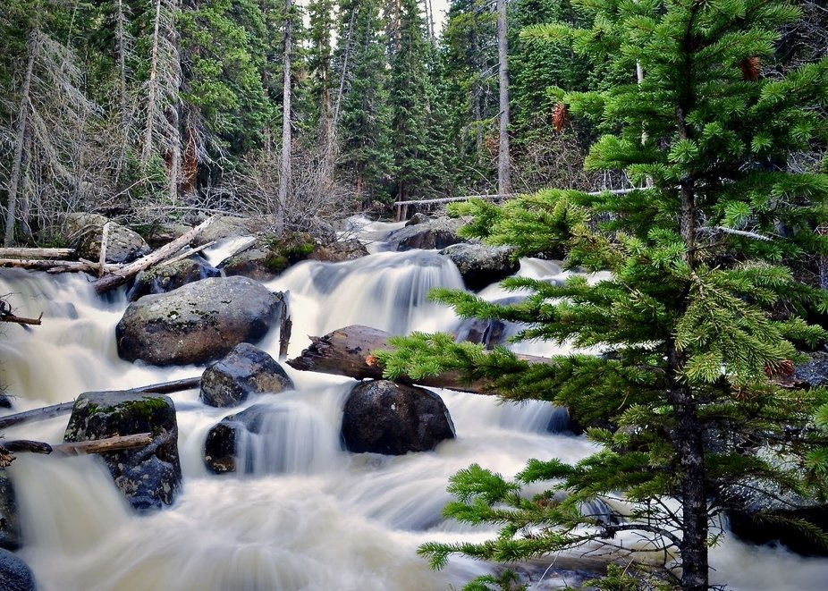 RMNP Wild Basin Bridge Falls