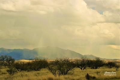 IMG_8941, A Spring Shower, Senoita, AZ, 11 Apr 20