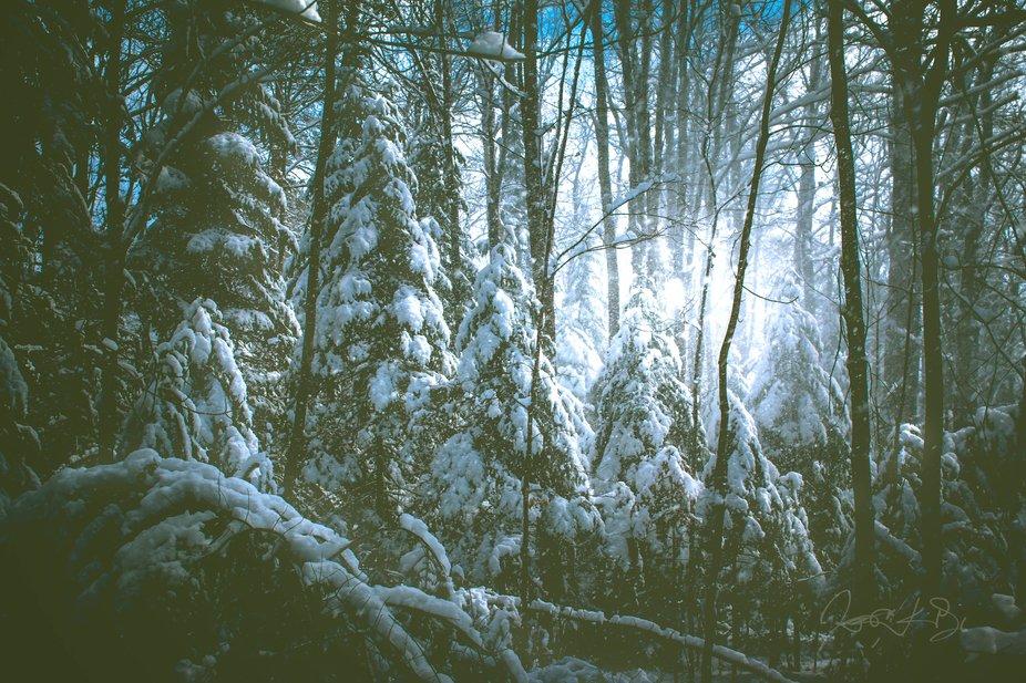 April snowers